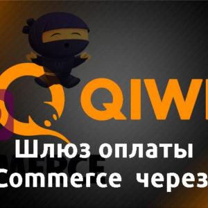 WooCommerce Qiwi